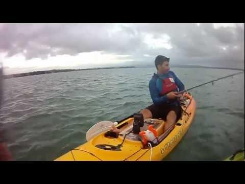 Auckland Harbour Bridge Fishing