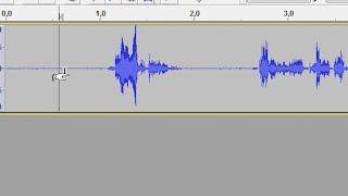 Stimme verbessern (Rauschen entfernen & gleichmäßige Lautstärke)
