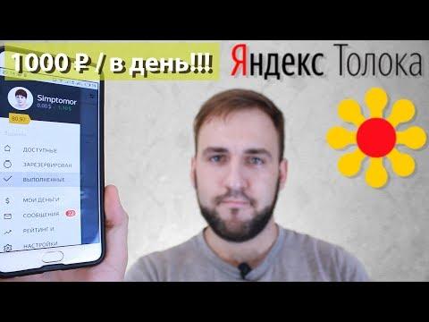 Работа в интернете Яндекс Толока - Рабские условия