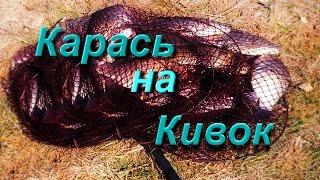 Карась на кивок(Рыбалка на карася в камыше на летнюю удочку с кивком и мормышкой., 2016-05-06T19:54:46.000Z)