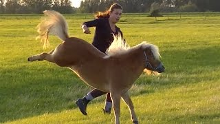 Horse bloopers part two!