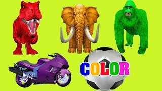 Learn Colors with Animals - Dinosaurs & Animals with Motorcycle - Cartoon Animation For Children
