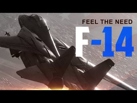 DCS F-14: The Need for Speed