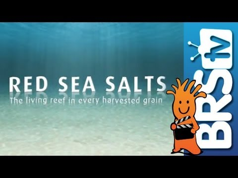 Red Sea Aquarium Salt Mix Demo  -  Tips On Making Sure You Are Using One Of The Better Salt Mixes.