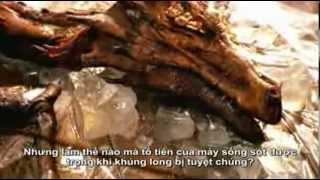 Repeat youtube video Rồng - từ truyền thuyết đến hiện thực, P1