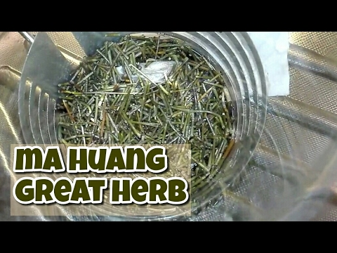 Ma huang ephedra sinica opinion about chinese herb from Aliexpress