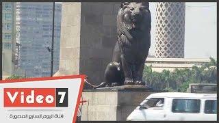 أباء يخاطرون بسلامة أطفالهم لالتقاط صورة بجوار أسود قصر النيل