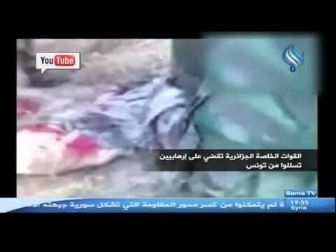 القوات الخاصة الجزائرية تقضي على إرهابيين تسللوا من تونس +18