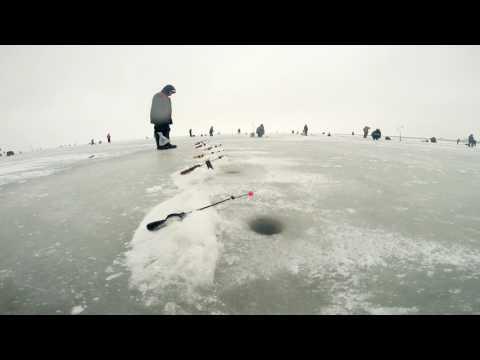 дамба кронштадт рыбалка