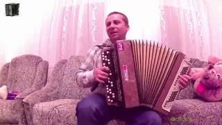 Владимир Бажиновский - Канарейка (Игра на баяне)