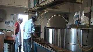 Extração de mel   18