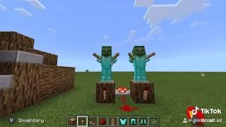 Minecraft tik toks