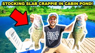 CATCHING and STOCKING SLAB CRAPPIE in My CABIN POND for the FIRST TIME!!!