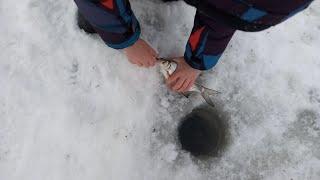 Обычный рыбацкий день Рыбалка на оке январь 2021