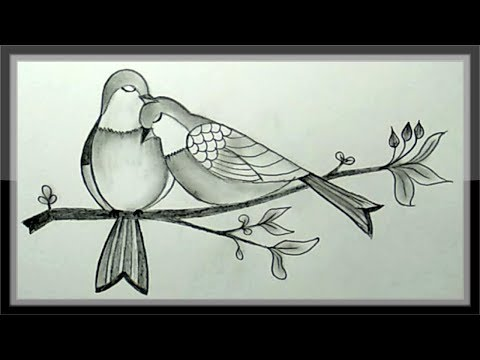 pencil-drawing---how-to-draw-a-pair-of-beautiful-birds