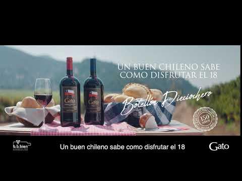 Un Buen Chileno Sabe Disfrutar El 18