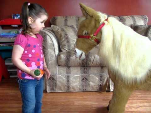 Butterscotch The Pony