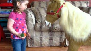 Butterscotch the Pony