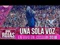 Jorge Rojas - Una Sola Voz | En Vivo en Cosquin 2018