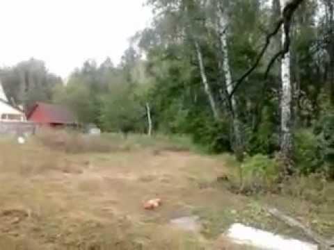 Участок с лесом и ПРУДОМ, 10 км от МКАД, по Киевскому ш
