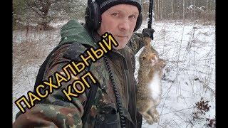 Пасхальный коп с зайцем.Minelab safari.Коп 2018.