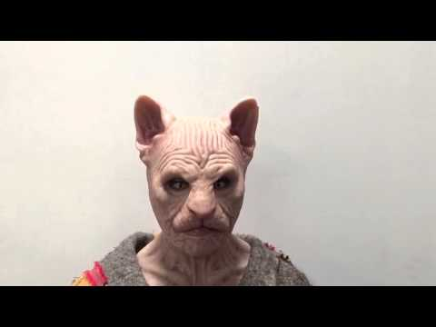 The Sphynx female fit silicone mask