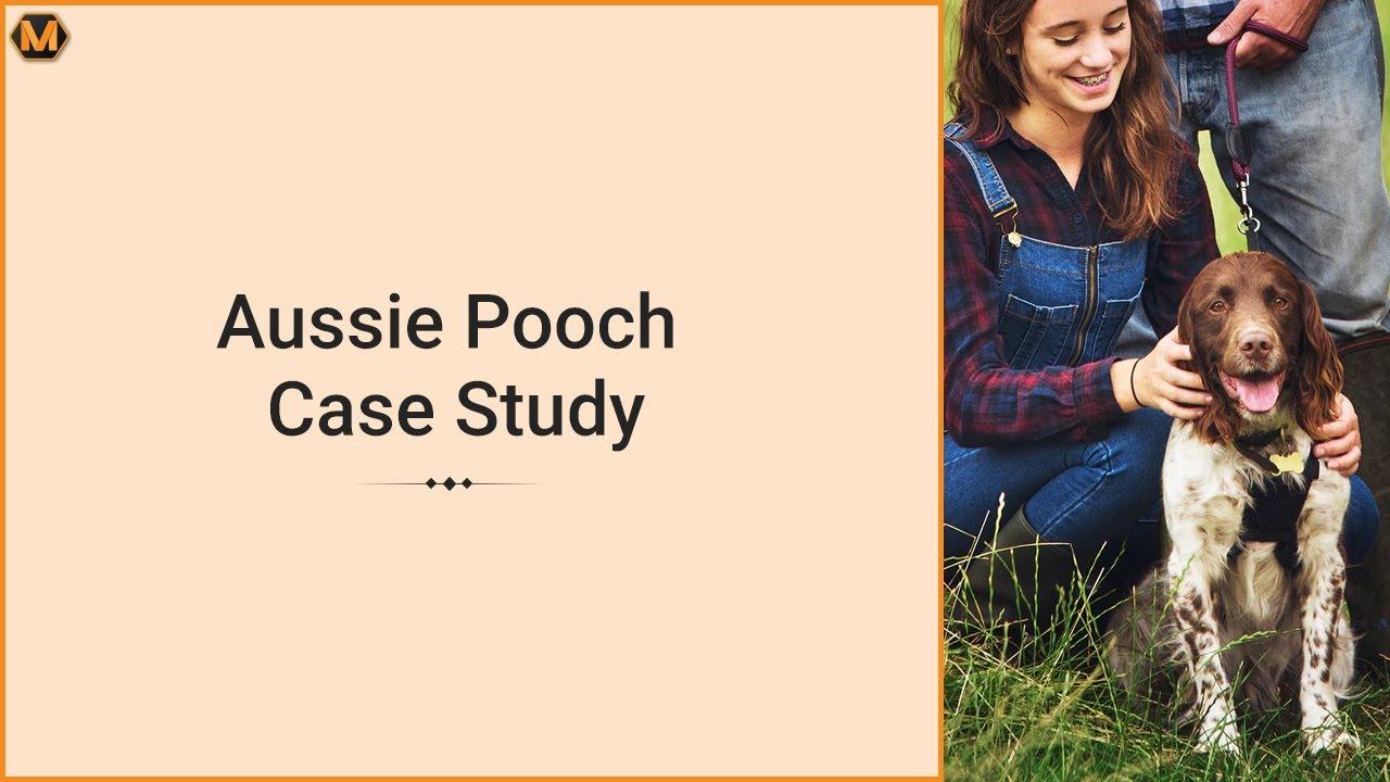 Sdlc Case Study Example Essay   Job Application Letter Format With     SP ZOZ   ukowo