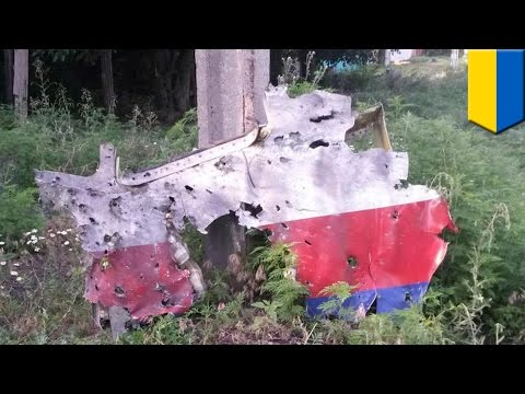 MH17 animation: Puncture holes evidence Malaysian jet was shot down by a fragmentation missile