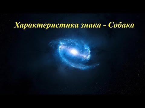 Лев – гороскоп на завтра