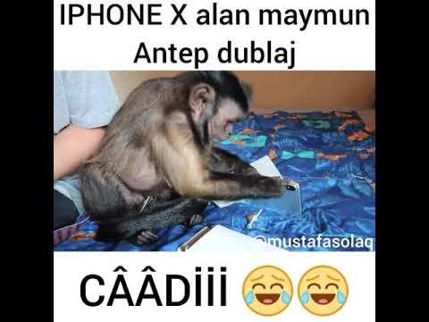 download IPHONE X Alan Maymun (Antep Dublaj )