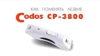 Как поменять керамическое лезвие на машинке для стрижки шерсти Codos CP-3800(http://www.smileydog.ru В наличии и под заказ сменные ножи (лезвия) для машинок Codos CP-3800, аккумуляторы, масло, щетки..., 2014-05-12T02:20:06.000Z)