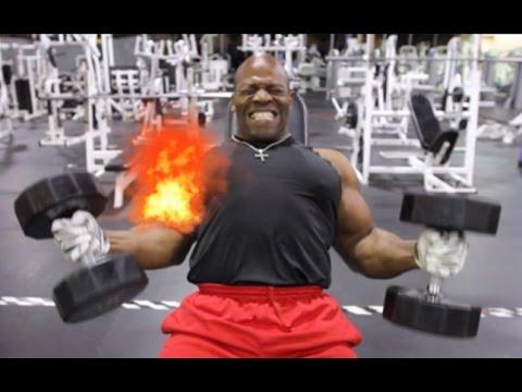 Bigger Biceps Now 3 Not Boring Workouts