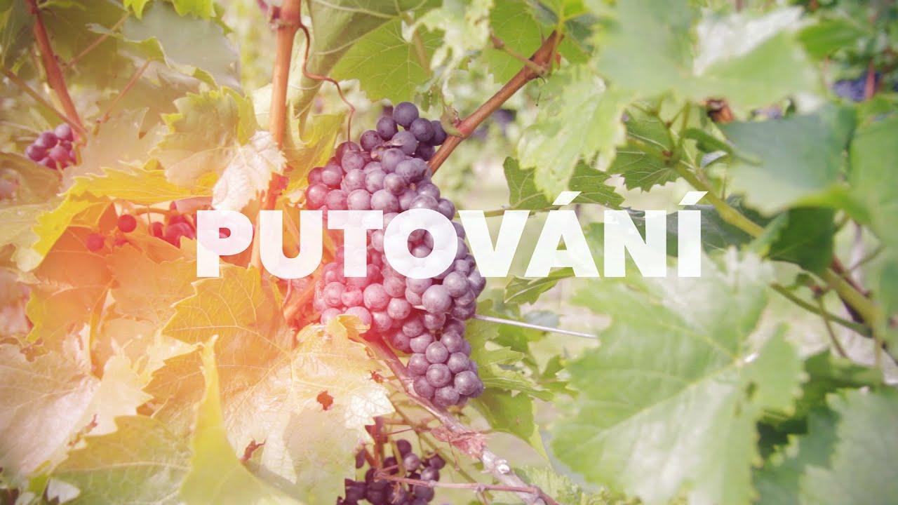 Znovín Znojmo: Putování po vinicích 2014 - Hustopeče