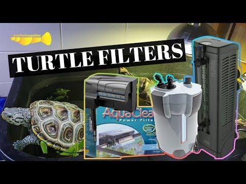 Turtle Filtration 101:  Turtle Basics