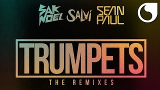 Sak Noel & Salvi Ft. Sean Paul - Trumpets (Shintaro Remix)