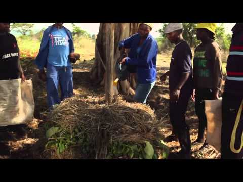 Black Gold: The Secrets of Compost,  Garden Africa