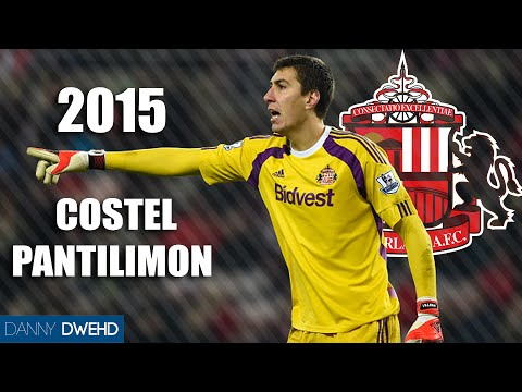 Costel Pantilimon 2015 | Best Saves | Sunderland - HD