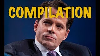 Best of Anthony Scaramucci - Compilation