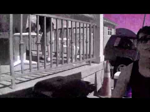 ricky spanish: Albuquerque Zoo Demo