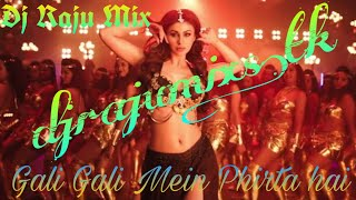 Gali Gali Mein Phirta hai DJ Raju mix.mp3