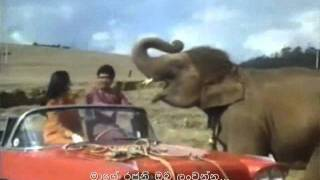 Song: Chal Chal Chal Mere Sathee Movie: Haathi Mere Saathi (1971) with Sinhala Subtitles