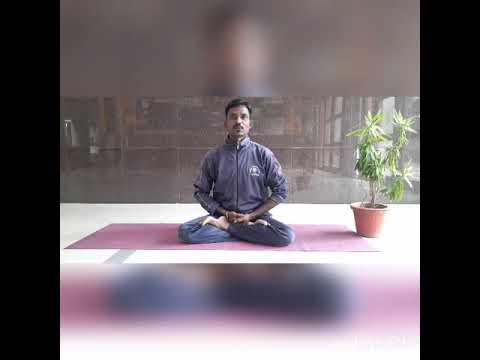 Paschimottanasana   Yoga - YouTube