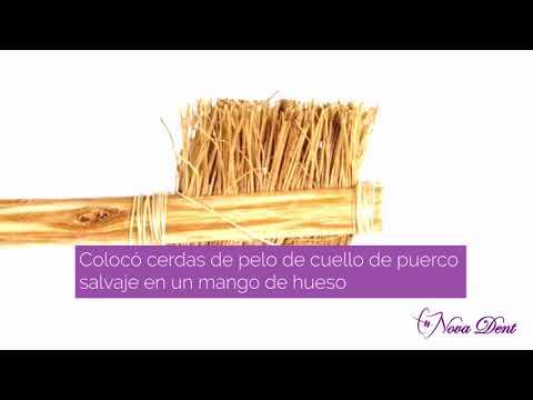 Conoces el origen del cepillo de dientes