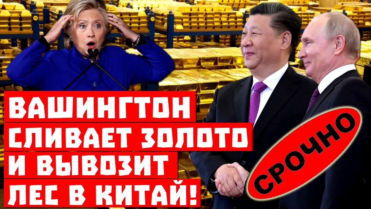 Путин довёл США! Вашингтон сливает золото и вывозит лес в Китай!
