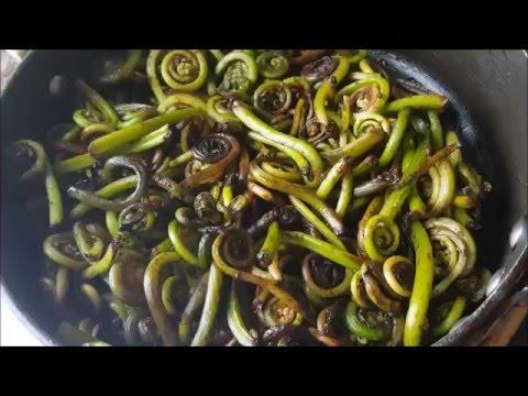 Салат из папоротника   Как правильно и вкусно приготовить