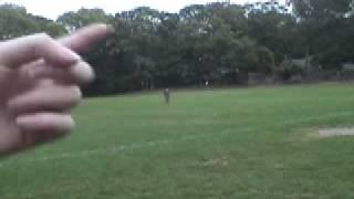 Running Jumping Standing Still