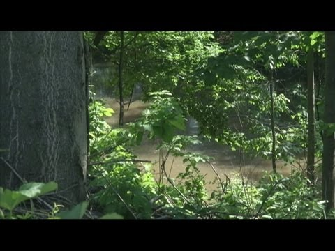 Download Youtube: EPA to meet on 18-Mile Creek pollution
