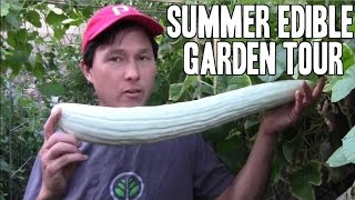 Summer Edible Raised Bed Vegetable Garden Tour