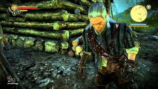 Hd Lets Play Witcher Part Kayran Carapace Armor