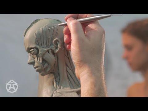 Live demo – anatomy female Andrew Cawrse - ecorche sculpture